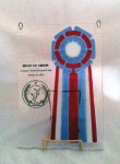 Best of Breed Trophy (Fused Glass)